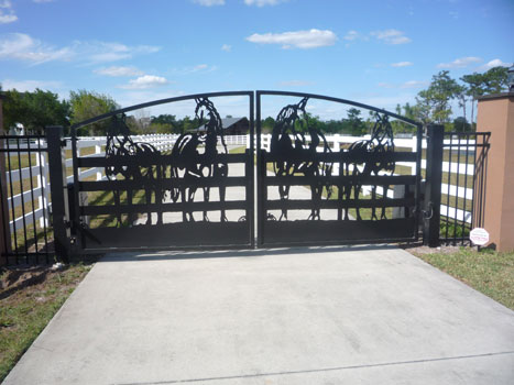 The Pointe At Panther Ridge An Equestrian Community With